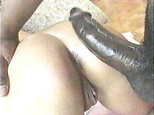 Interracial sex cassandra